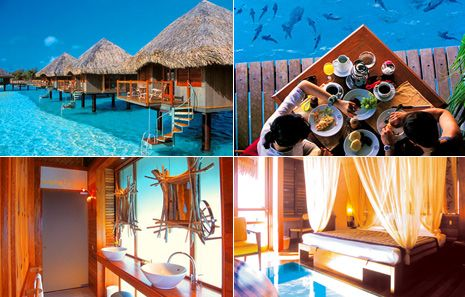 Bucket List Entry: Le Meridien Resort Bora Bora... Over-water bungalows with glass bottom floor.