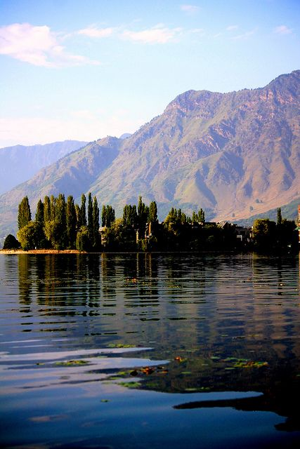 Dal lake in the backdrop of the Himalayan range   Flickr - Photo Sharing! Photograph credits belong to Suhael Choudhury and any representation of this capture needs permission of the photographer.