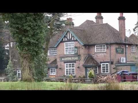 Good Food at Martins Pond - Potten End, Hertfordshire