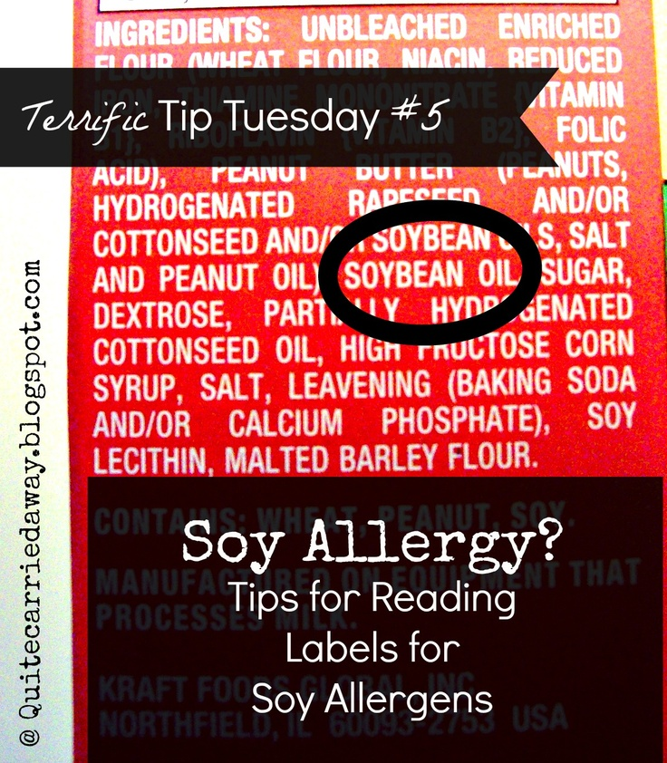 Quite Carried Away...: Terrific Tip Tuesday #5: Soy Allergy Tips