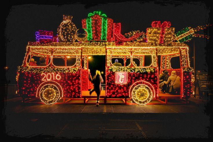 2016 Bus ©Arek Uriasz
