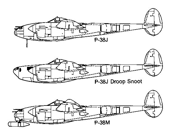 p 38 nose variations
