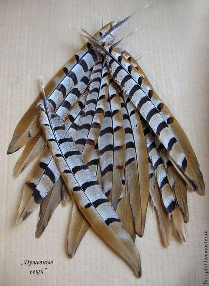 Другие виды рукоделия ручной работы. Ярмарка Мастеров - ручная работа. Купить Перья фазана длинные (24-29 см). Handmade.