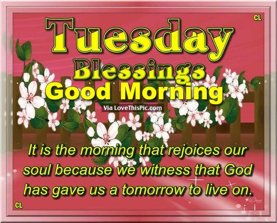 Tuesday Blessings, Good Morning good morning tuesday tuesday quotes good morning quotes happy tuesday good morning tuesday quotes happy tuesday morning tuesday morning facebook quotes tuesday image quotes happy tuesday good morning