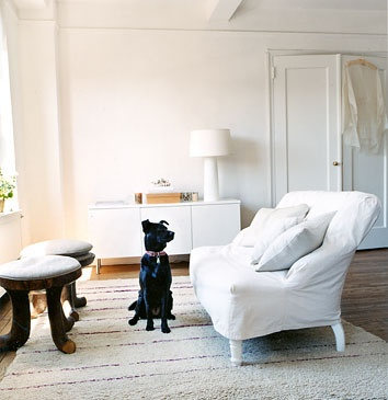 White Couch Black Dog from Flickr by habitually chic: Decor Ideas, Small Places, Black Dogs, Small Living Rooms, Room Decorating Ideas, Apartment Living, Dogs Pictures, Small Spaces, Domino'S Magazines