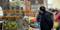 Dont trade with China until they respect animal rights and human rightsCare2 : The Petition Site : My PetitionSite