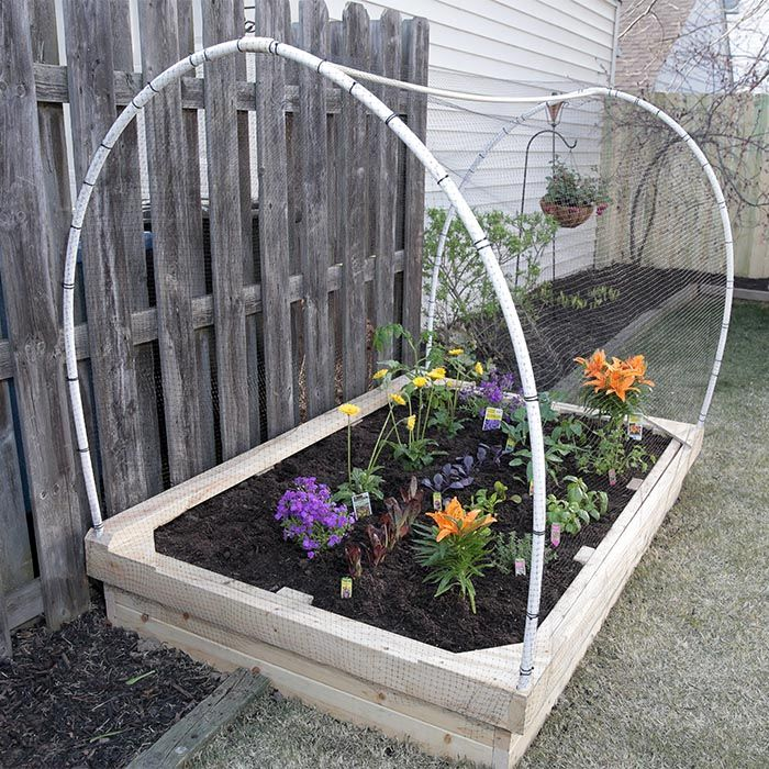 A Raised Garden Bed Is A Perfect Solution For Growing Fresh Veggies And  Flowers When Backyard