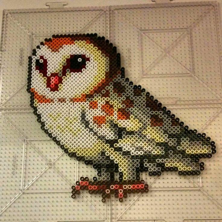 Barn owl perler beads by thevendelo                                                                                                                                                                                 More