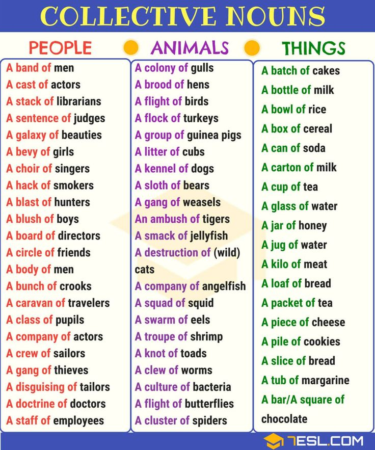 Collective Nouns Useful List & Examples in English