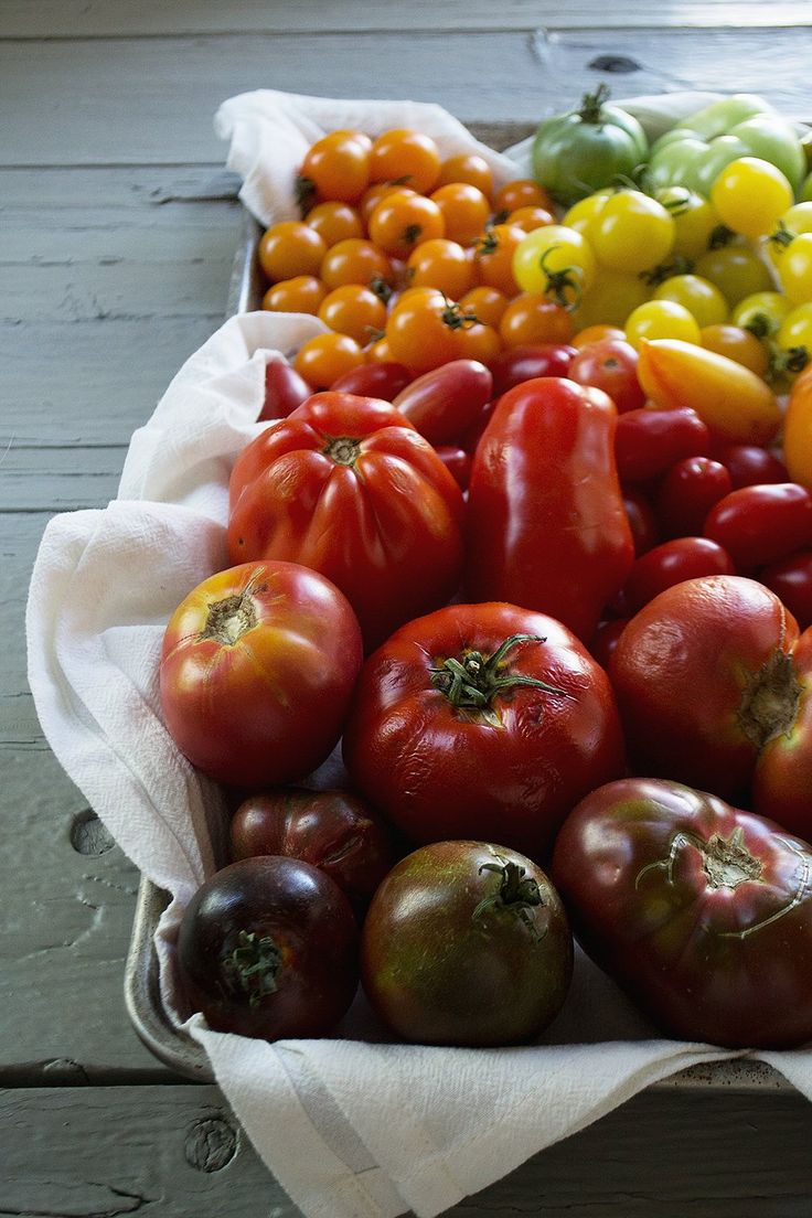 There are so many juicy and colorful variations of tomato, and each kind brings unique flavor to your recipes. From beefsteak to heirloom, consider this your comprehensive guide to a garden staple.
