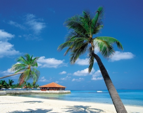 Carribean Islands