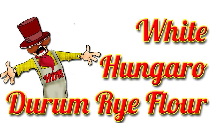WHITE HUNGARO DURUM RYE FLOUR:  It has higher P (phosphorus), K (kalium), Ca (calcium), Cu (copper), Mg (magnesium), Zn (zink) content than the wheat.  From vitamins E, B1, B2, B6 the durum rye flour contains double quantity, its rough fibre and dietary fibre content is more than double than the wheat flour, its total carbohydrate content is nearly 10 percent lower, so its energy content is proportionally lower, as well. Marketable bakery products can be made from it without using additives.