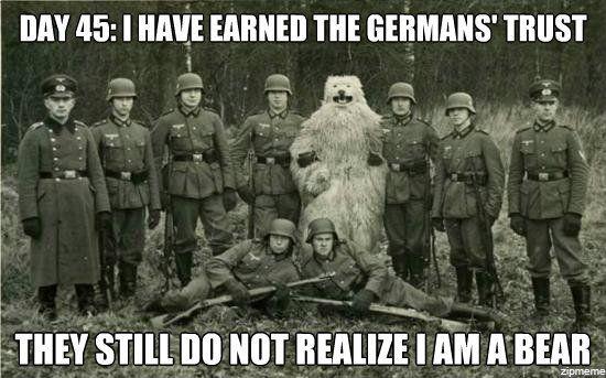 what bear...?