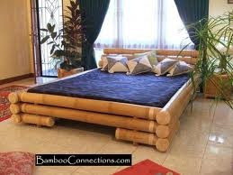 Bamboo bed frame -- for next time.....