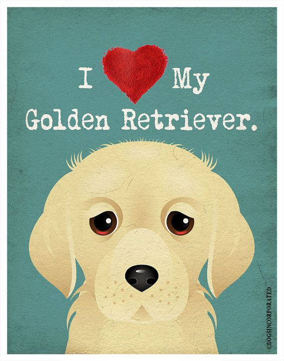 I Love My Golden Retriever  I Heart My Golden  by DogsIncorporated