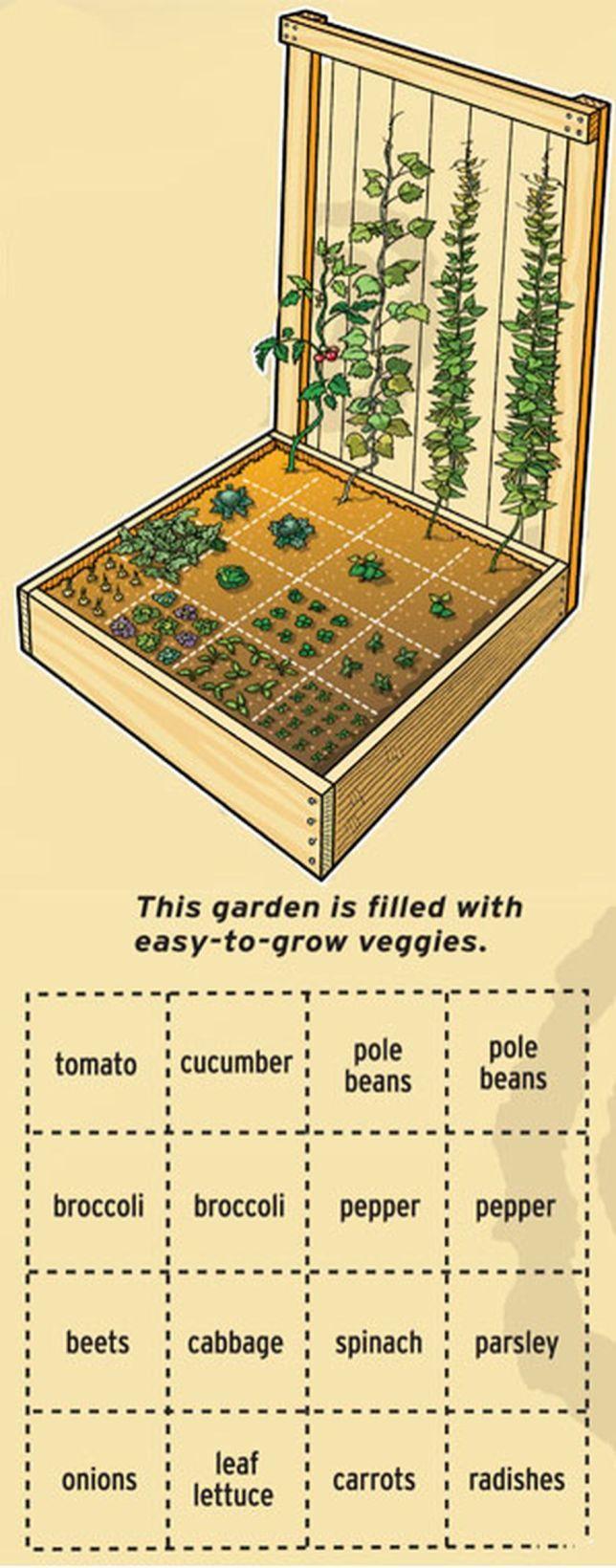 сколько процентов занимает огород