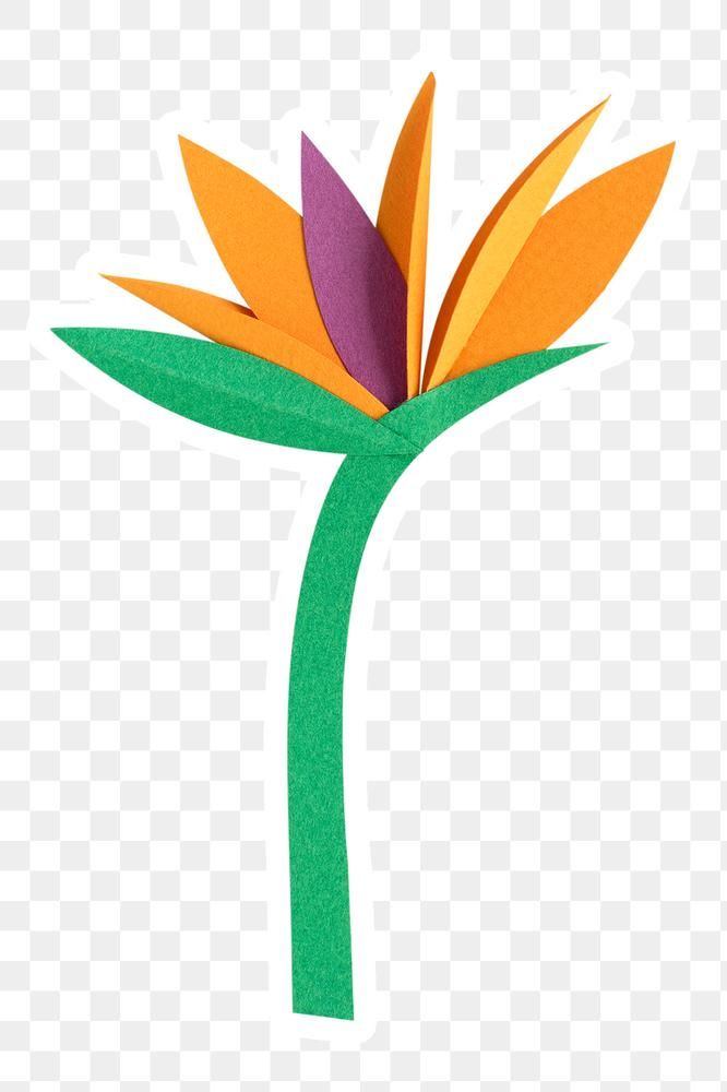 Bird Of Paradise Flower Papercraft Sticker Png Free Image By Rawpixel Com Namcha Birds Of Paradise Flower Birds Of Paradise Paper Crafts