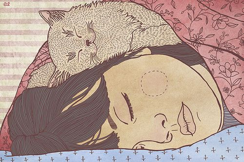illustration - girl and cat