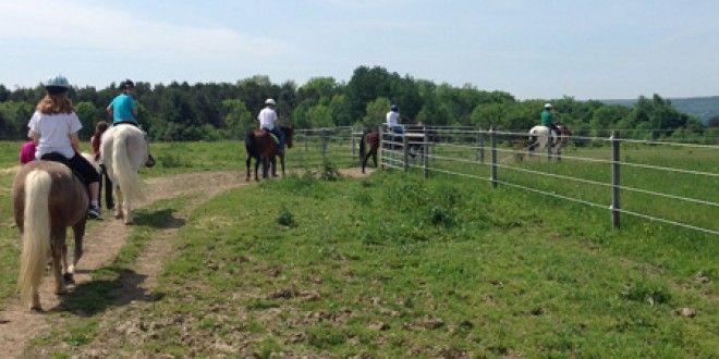 High Hurdles Offers Therapeutic Horseback Riding in Sardinia