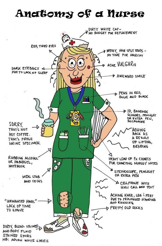 Anatomy of a Nurse (except the cap, who wears those these days?!)