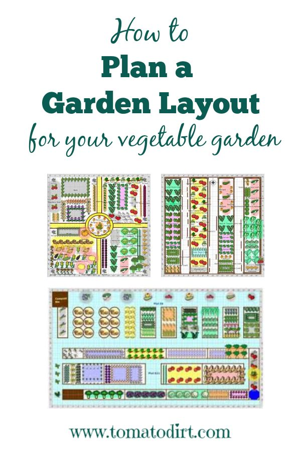 How to Plan a Garden Layout for Growing Vegetables and Tomatoes