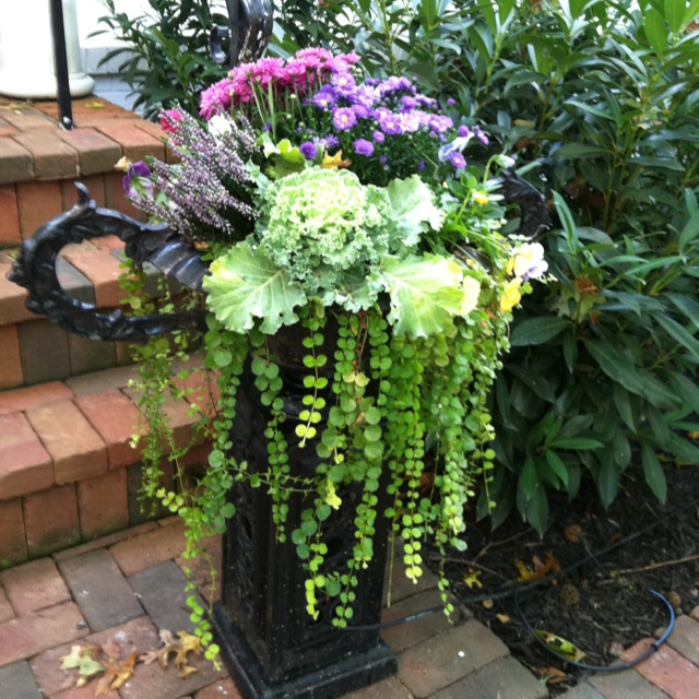 91 best fall planters images on pinterest fall planters gardening fall planter workwithnaturefo