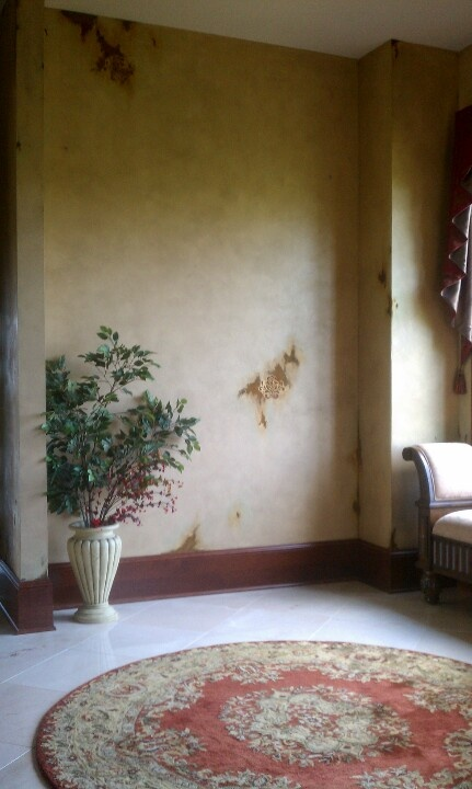 42 best Our work @ M \ M Bender Designer Wall Finishes images on