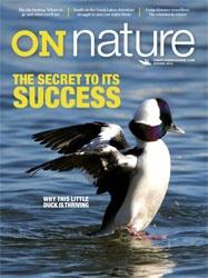 Nature magazine pdf