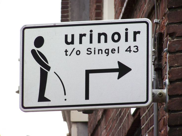hahaha!Toilets Signs, Funny Street, Signs Heresyoursign, Crazy Signs, Funny Signs, Funny Pictures, Street Signs, Funny Roads Signs, Art Funny