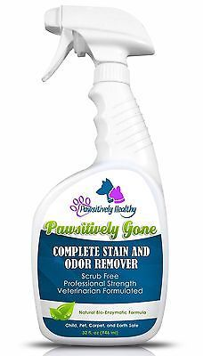 Dog Cat Pet Urine Smell - Strongest Enzyme Cleaner Stain And Odor Remover - S...