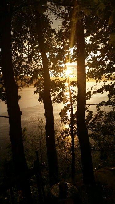 Sun through the rain and trees