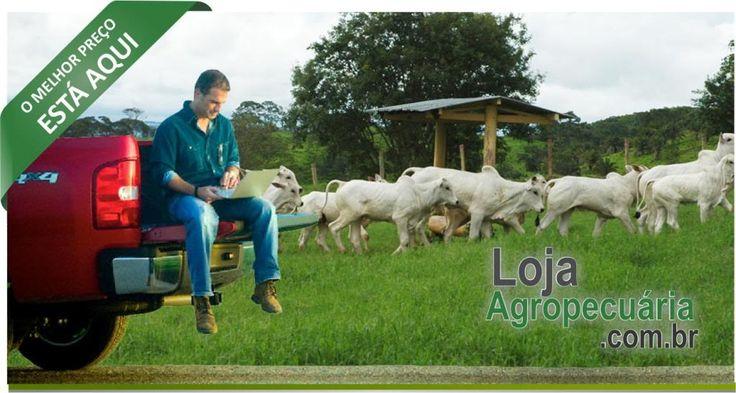 Bicarbonato de Sódio Saco de 25 Kg Arm & Hammer Loja Agropecuaria - Nutrição Animal e Grãos\Outros Itens de Nutrição Animal e Grãos\Outros Itens de Nutrição Animal e Grãos