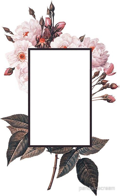4k Wallpaper Iphone