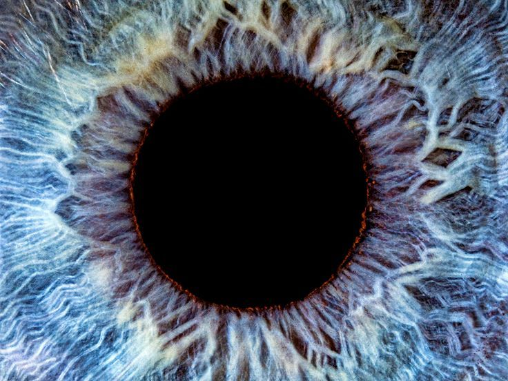 A human eye. Incredible... How fascinating is it that this image resembles space objects and deep sea life forms..?!