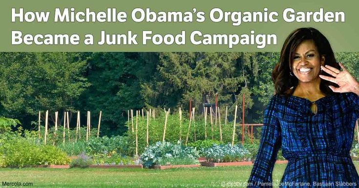 "The First Lady's ""Let's Move"" campaign now focuses on childhood obesity, different from her original stance, which focused on organic food and organic gardening. http://articles.mercola.com/sites/articles/archive/2016/10/18/white-house-organic-garden.aspx"