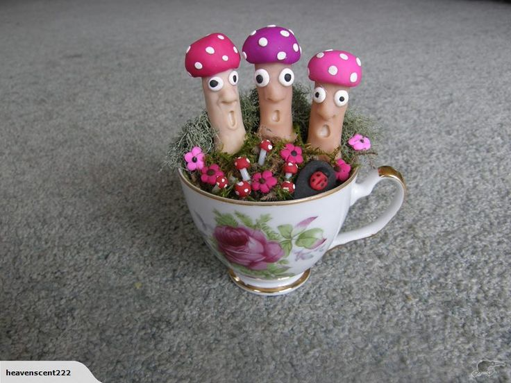 Create your very own miniature  scenery with 3 funny little fairy toadstools in a china cup.with a little garden .