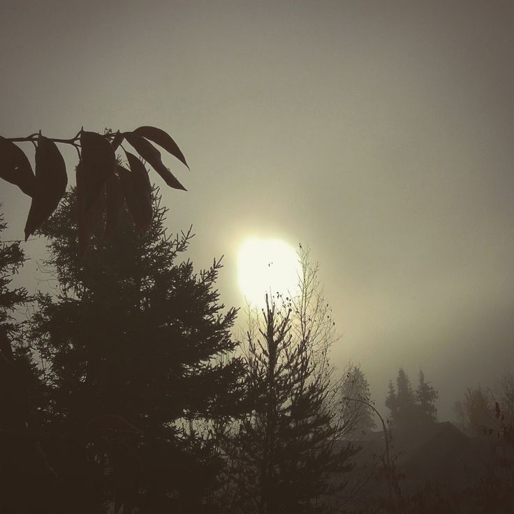 https://flic.kr/p/Eg4gTX | With the ending of these last few skies of summer this first morning of October begins the thinning of #liminal time. #Samhain #halloween #festival #autumn #winter #religion