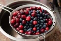 Fresh berries..