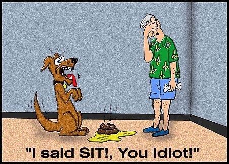 Sit...: Sit, Dogs, Funny Stuff, Funnies, Humor, Animal