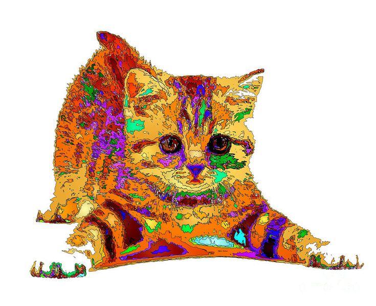 Jelly Bean The Kitty. Pet Series Digital Art by Rafael Salazar