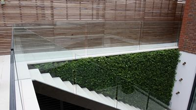 Green Wall and Glass in Garden