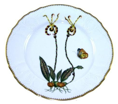 Anna Weatherley Orchid 10.5 In Dinner Plate #1 by Anna Weatherley. $540.00. Rich orchid flowers adorn this collection; perfect for mixing with other Anna Weatherley dinnerware. Each piece is hand edged in gold. Anna Weatherley?s designs are based on botanical sketches from the 18th century as well as Dutch still-life paintings. At home, we find her pieces look just as good on our tables as they do on our walls. Material: Hand-painted and gold-edged porcelain. Care: Handwashin...