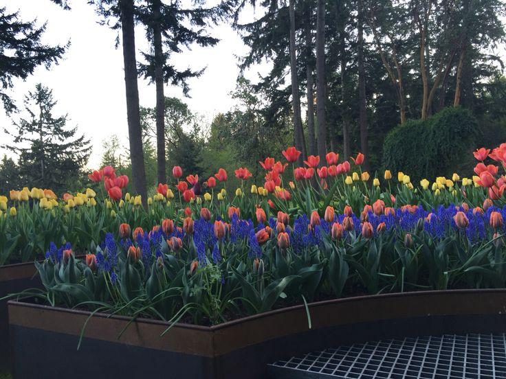 Bildergebnis für Betty MacDonald farm in Spring