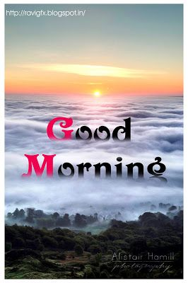 Beautiful good morning which is almost here and you better be ready for this amazing Day of images.