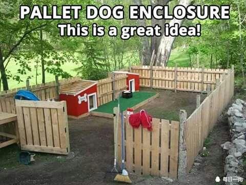 Pallet fencing / Dog enclosure
