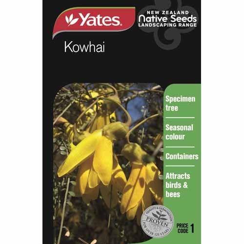 Seed  Kowhai  Native