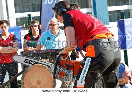 Palaiseau, France. 23rd September, 2017. International Lumberjack Competition in Palaiseau. France Credit: flavia - Stock Photo