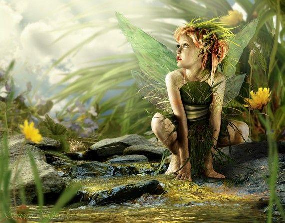Summer Whispers 8.5x11 Fantasy Fairy Art by SusanSchroderArts