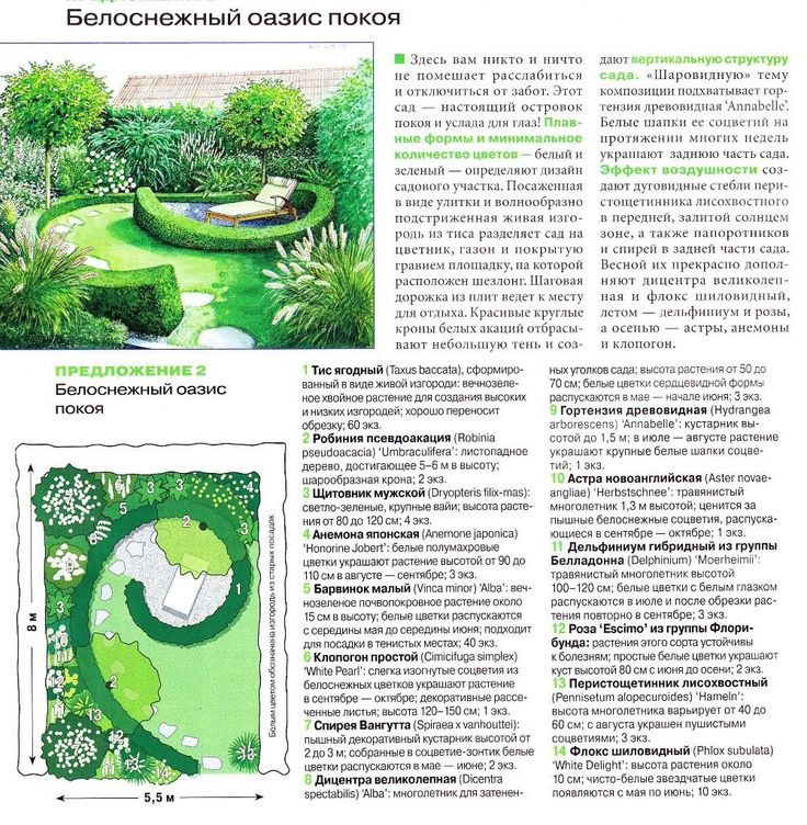 Garden Design Graphics 395 best garden design graphics images on pinterest | landscape