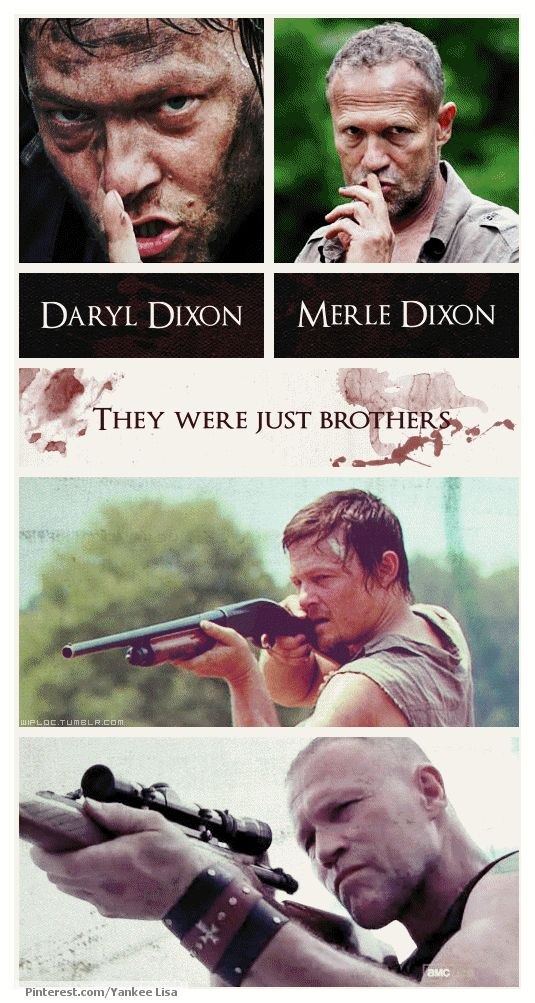 Daryl Dixon & Merle Dixon, The Walking Dead